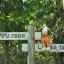 .. where Ikea travels to Viru raba (bog)